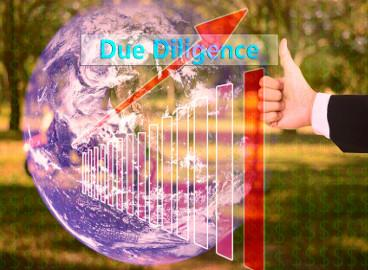 Due Diligence, IT + Innovationen